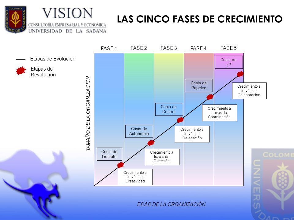 LAS CINCO FASES DE CRECIMIENTO