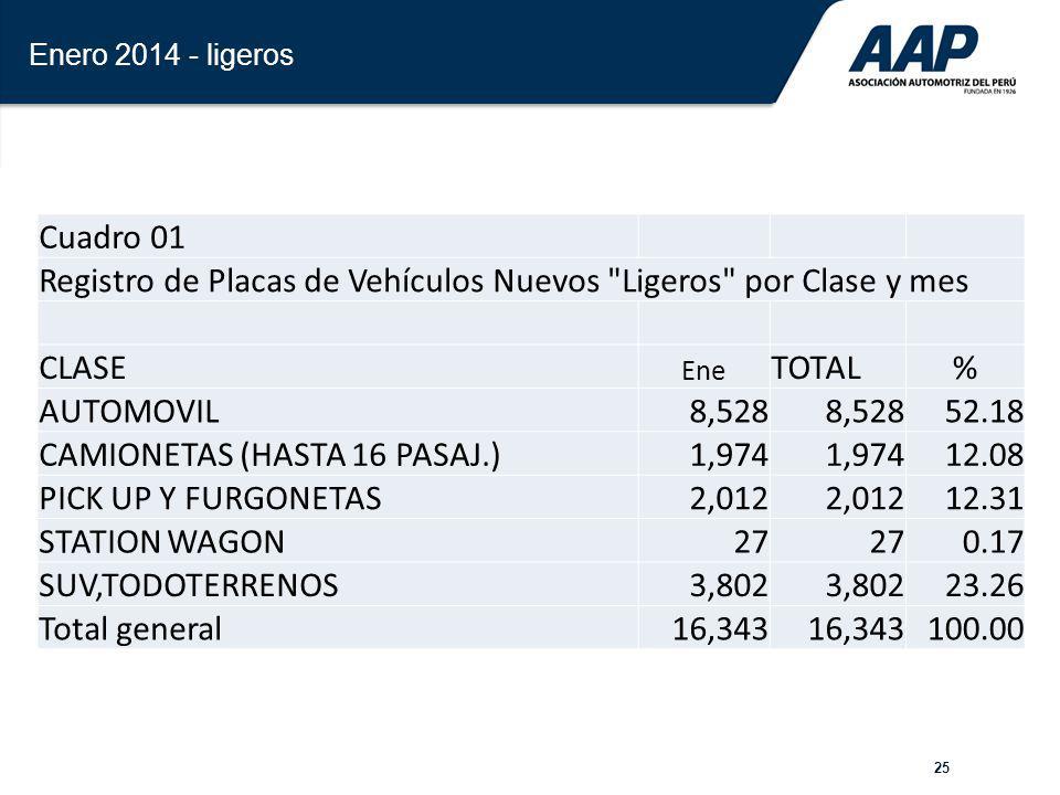 Registro de Placas de Vehículos Nuevos Ligeros por Clase y mes CLASE