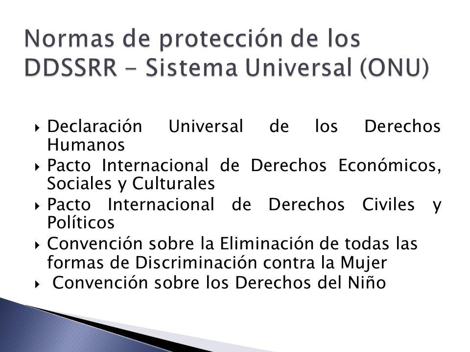Normas de protección de los DDSSRR - Sistema Universal (ONU)