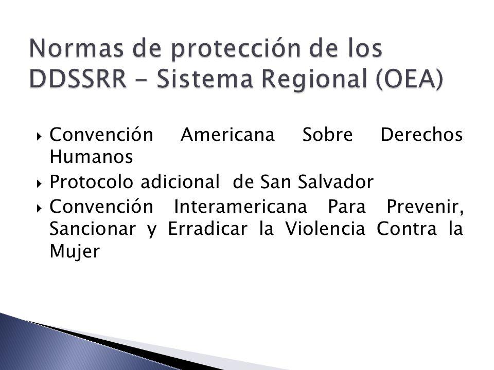 Normas de protección de los DDSSRR - Sistema Regional (OEA)