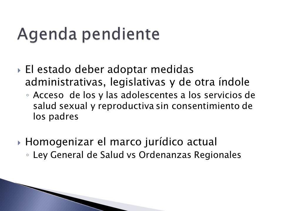 Agenda pendiente El estado deber adoptar medidas administrativas, legislativas y de otra índole.