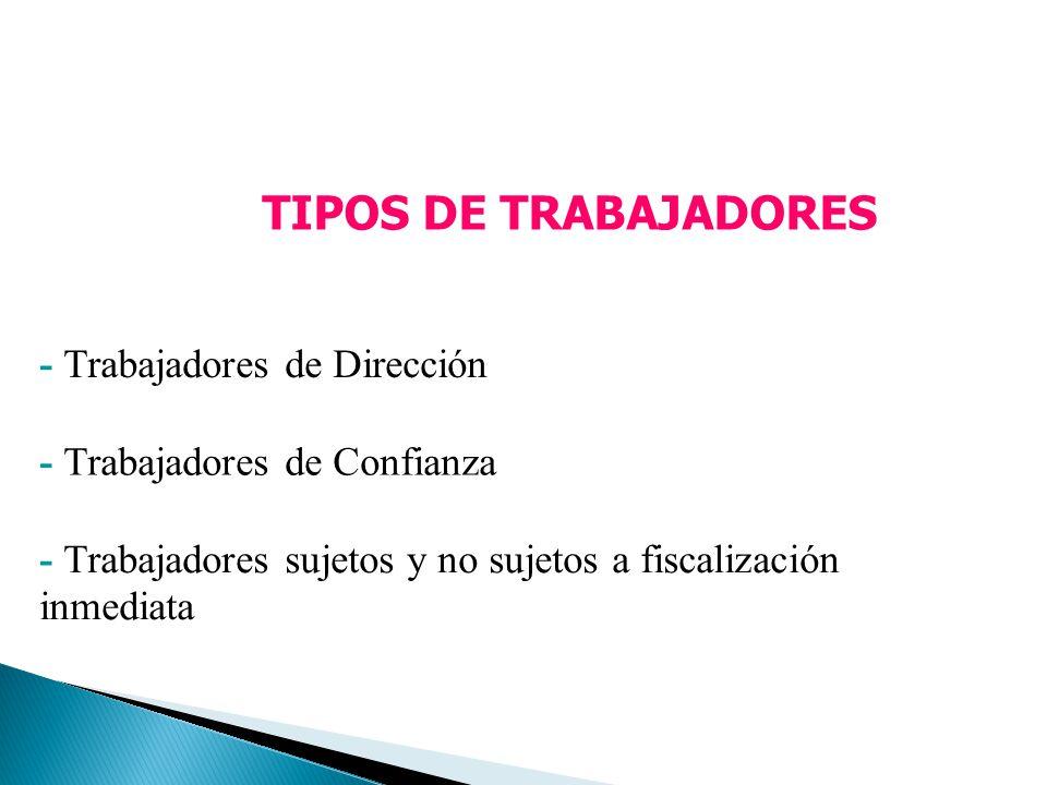 TIPOS DE TRABAJADORES - Trabajadores de Dirección
