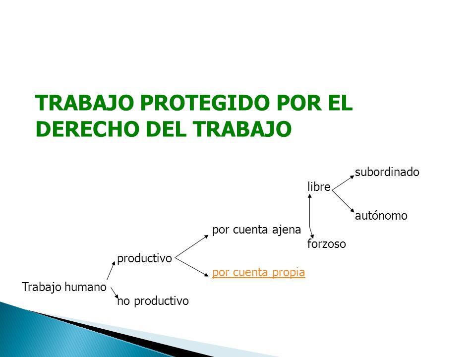TRABAJO PROTEGIDO POR EL DERECHO DEL TRABAJO