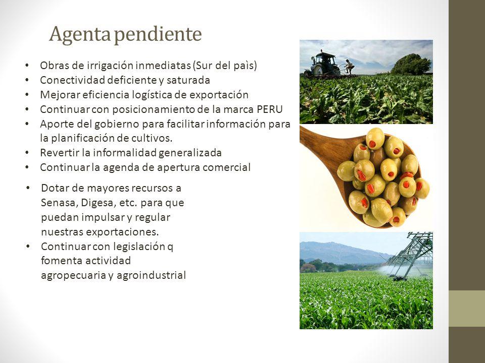Agenta pendiente Obras de irrigación inmediatas (Sur del paìs)