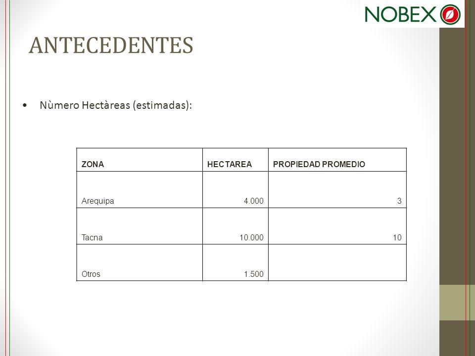 ANTECEDENTES Nùmero Hectàreas (estimadas): ZONA HECTAREA