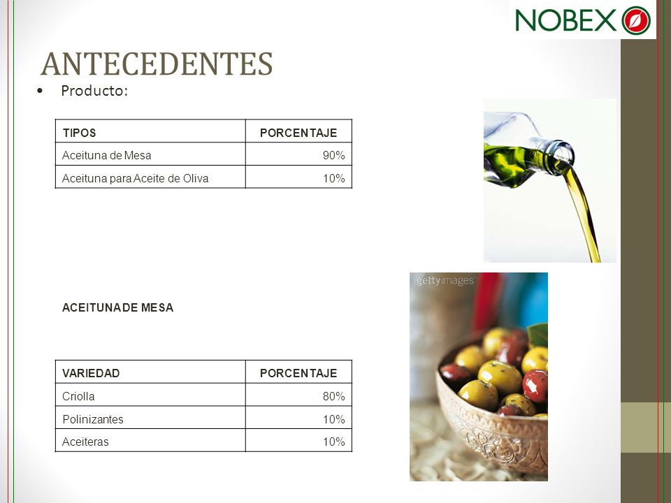 ANTECEDENTES Producto: TIPOS PORCENTAJE Aceituna de Mesa 90%