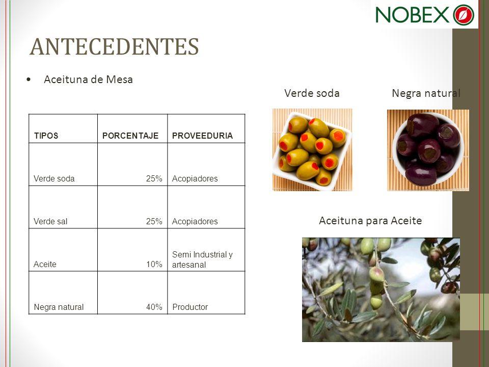 ANTECEDENTES Aceituna de Mesa Verde soda Negra natural