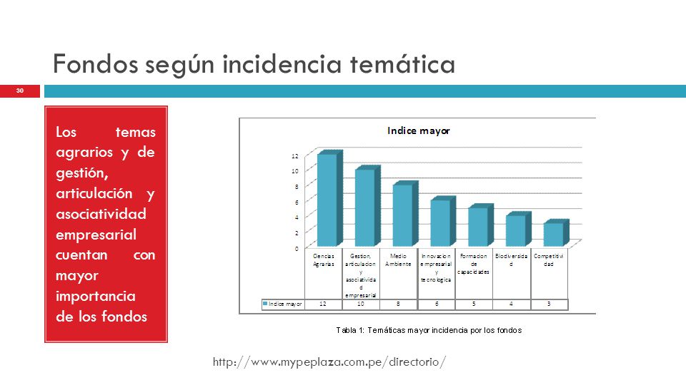 Fondos según incidencia temática