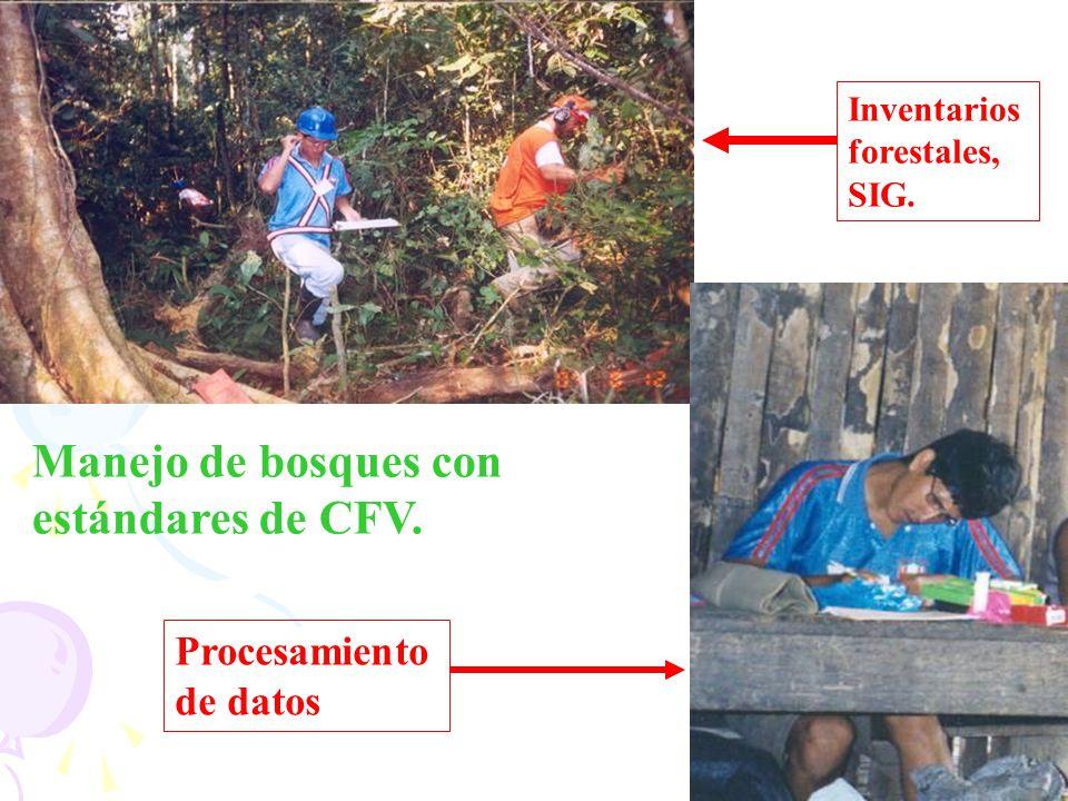 Manejo de bosques con estándares de CFV.