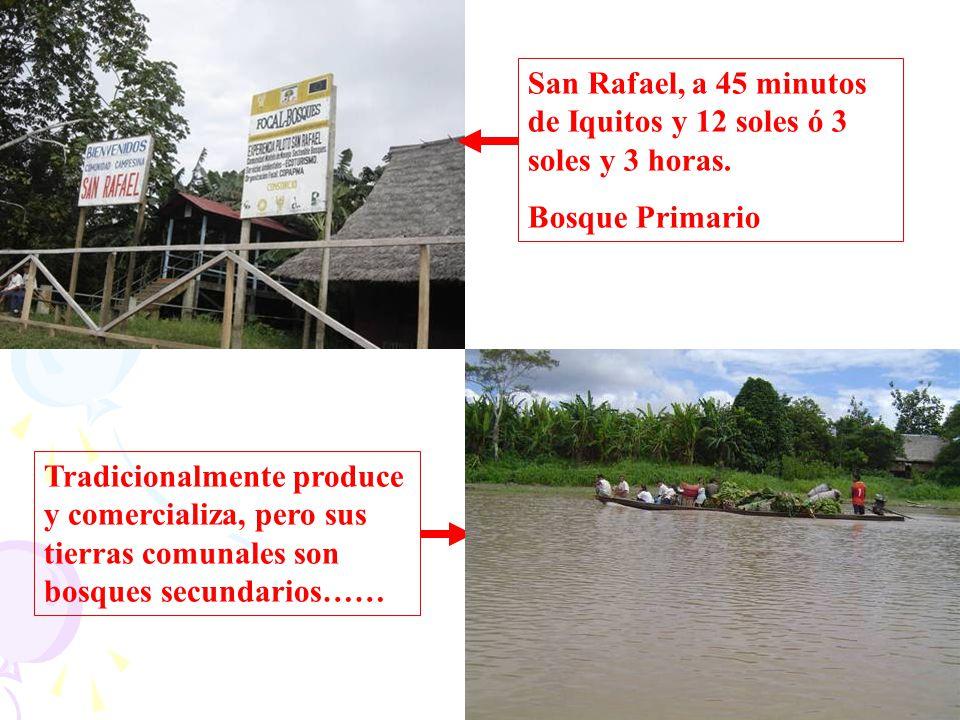 San Rafael, a 45 minutos de Iquitos y 12 soles ó 3 soles y 3 horas.