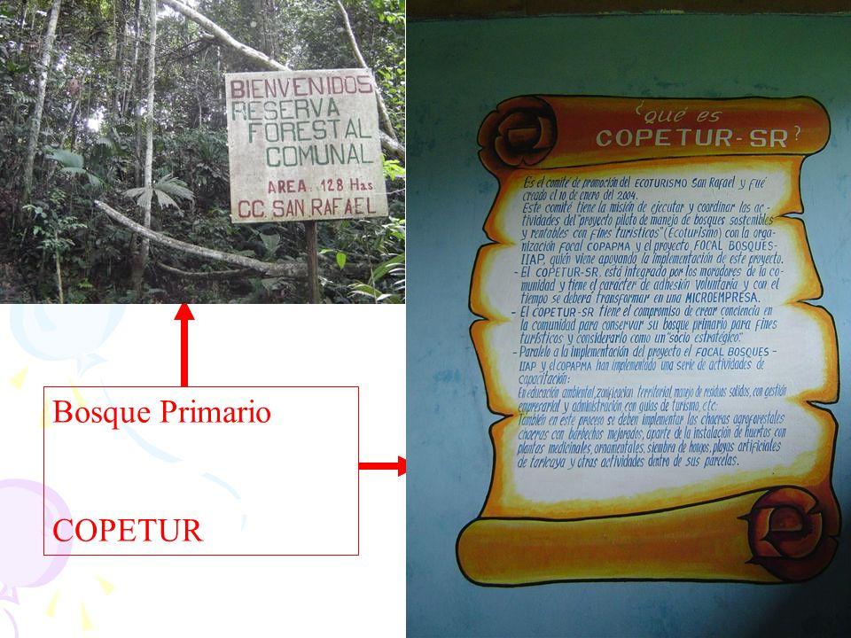 Bosque Primario COPETUR