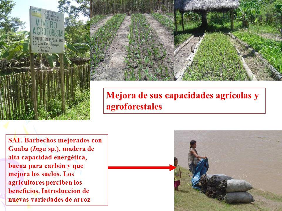 Mejora de sus capacidades agrícolas y agroforestales