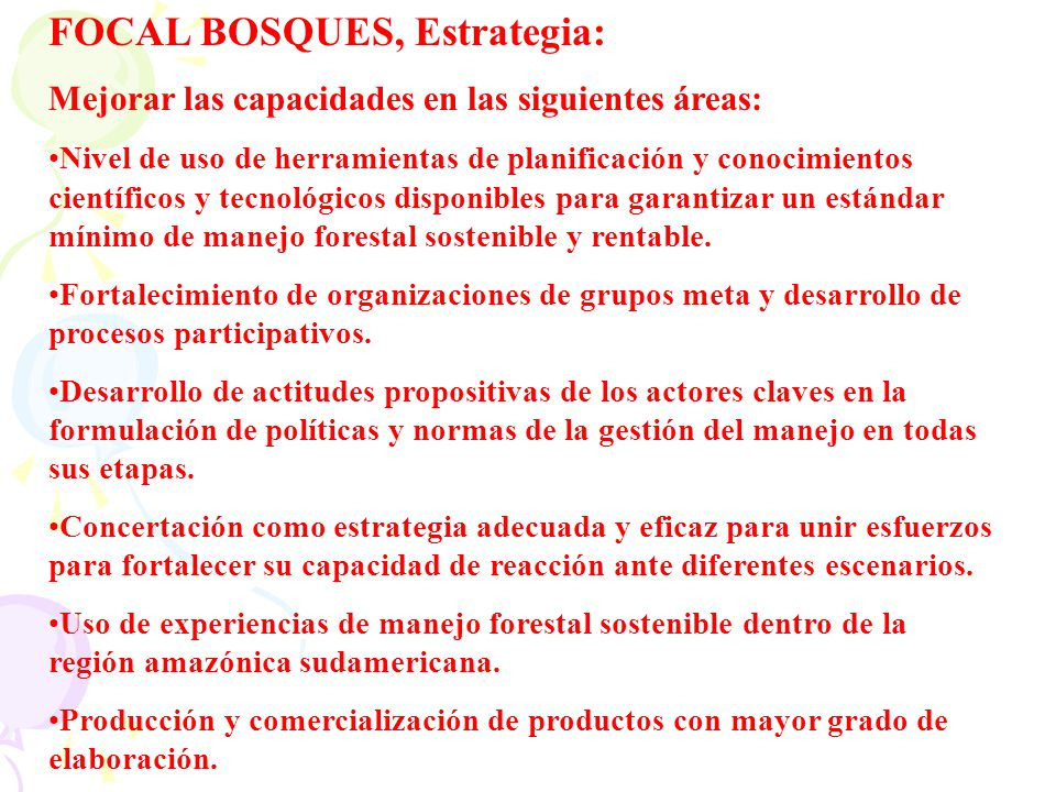 FOCAL BOSQUES, Estrategia:
