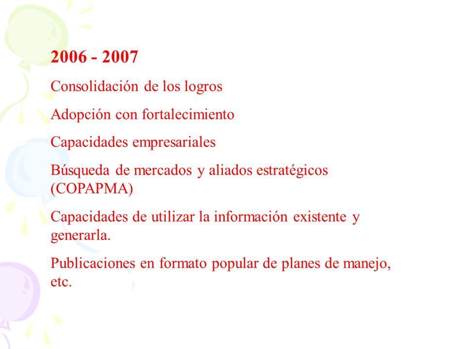 2006 - 2007 Consolidación de los logros Adopción con fortalecimiento
