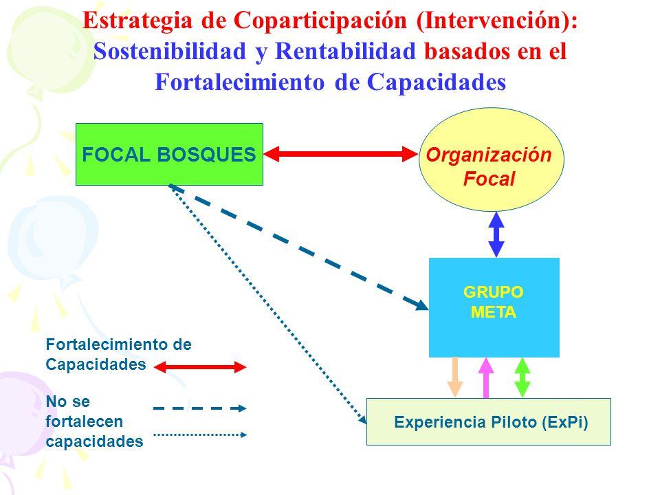 Estrategia de Coparticipación (Intervención): Sostenibilidad y Rentabilidad basados en el Fortalecimiento de Capacidades