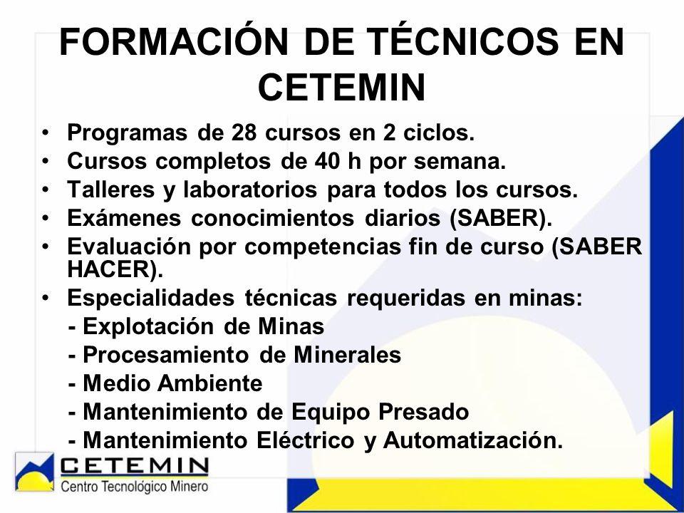FORMACIÓN DE TÉCNICOS EN CETEMIN