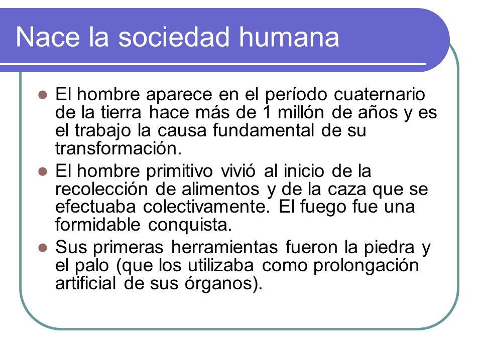 Nace la sociedad humana