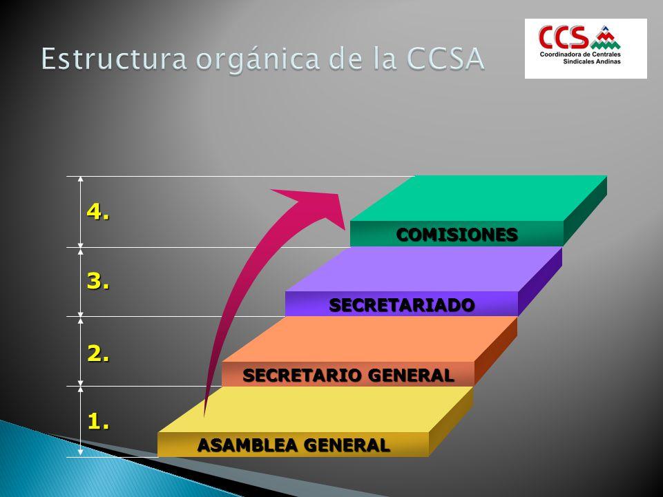 Estructura orgánica de la CCSA