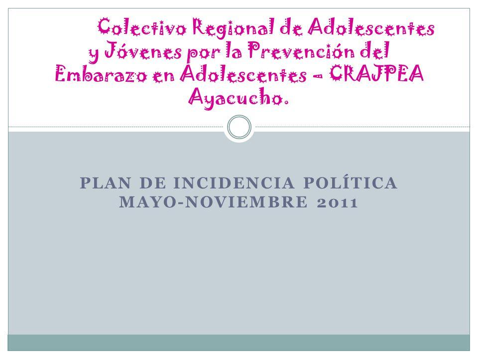 Plan de incidencia política mayo-noviembre 2011