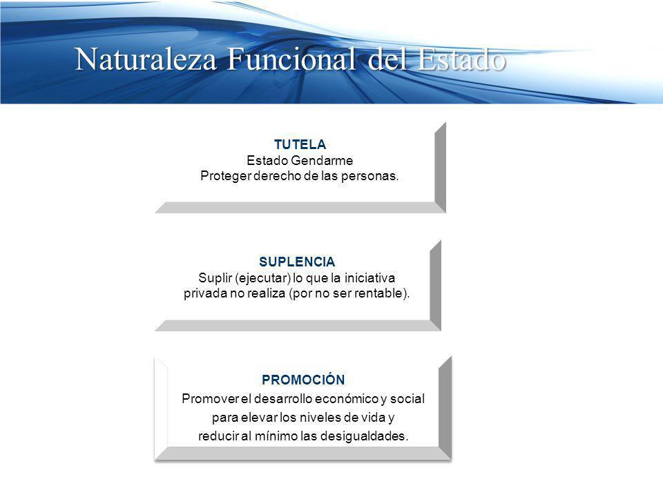 Naturaleza Funcional del Estado