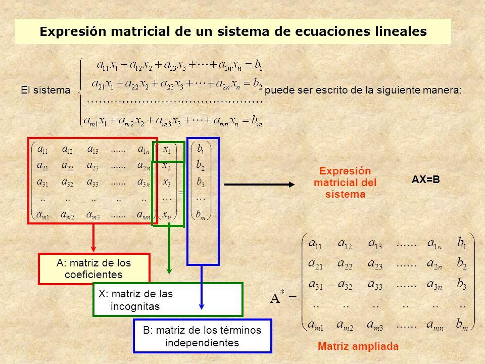 Expresión matricial de un sistema de ecuaciones lineales