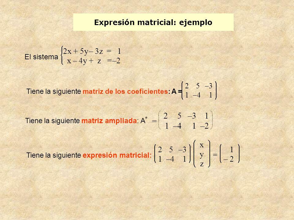 Expresión matricial: ejemplo