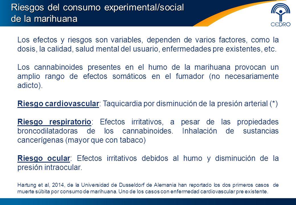 Riesgos del consumo experimental/social de la marihuana