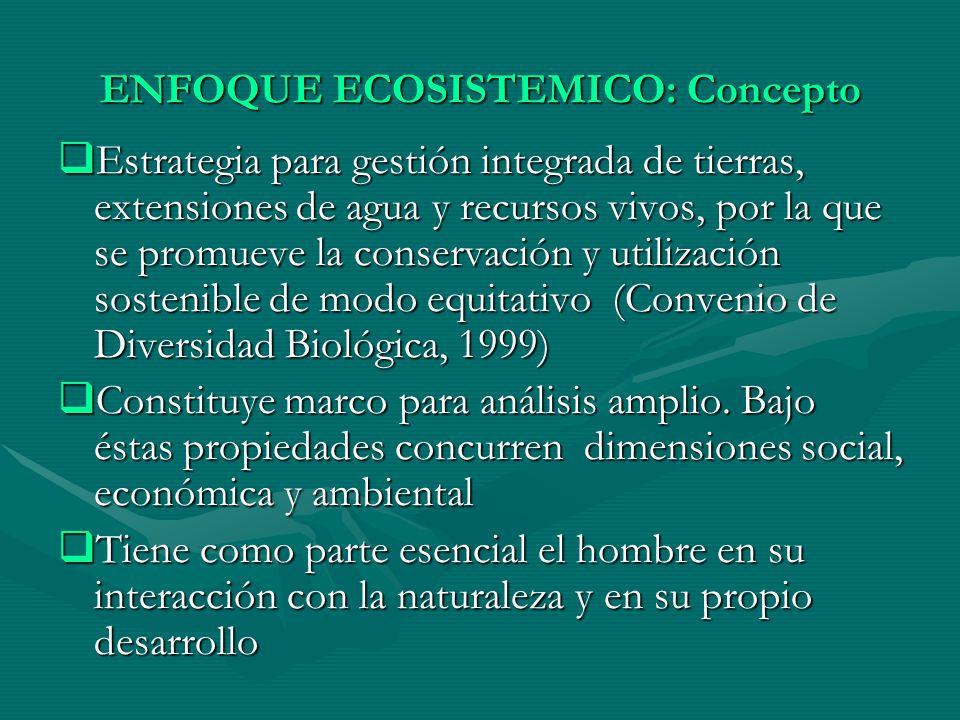 ENFOQUE ECOSISTEMICO: Concepto