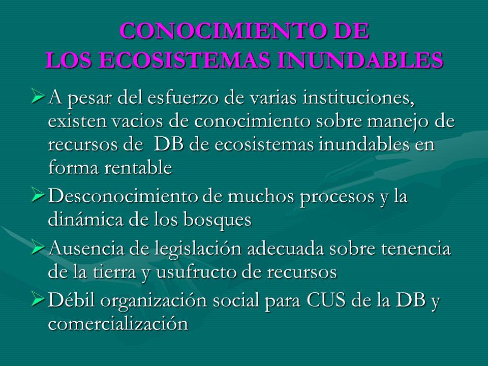 CONOCIMIENTO DE LOS ECOSISTEMAS INUNDABLES