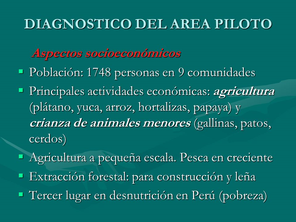 DIAGNOSTICO DEL AREA PILOTO