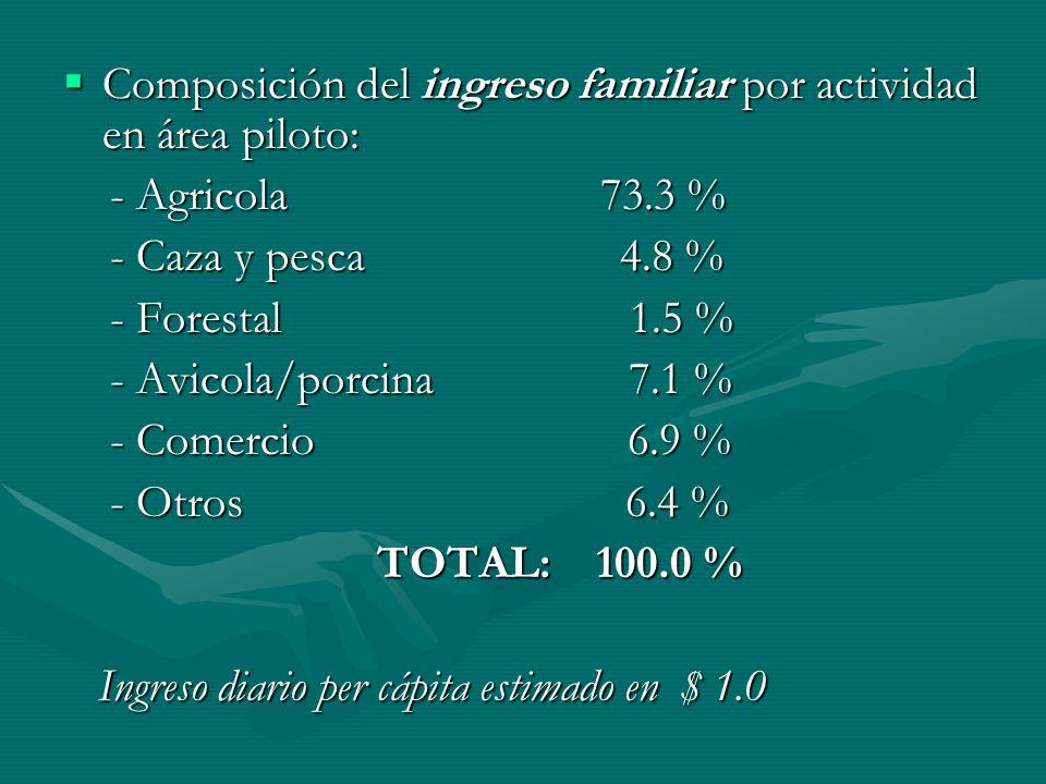 Composición del ingreso familiar por actividad en área piloto: