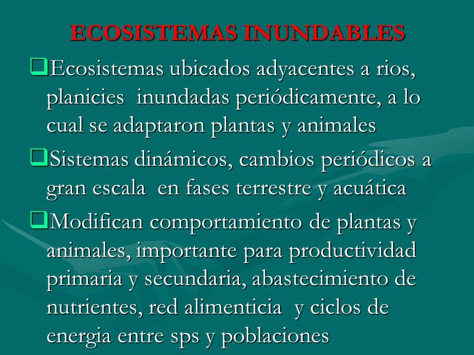 ECOSISTEMAS INUNDABLES