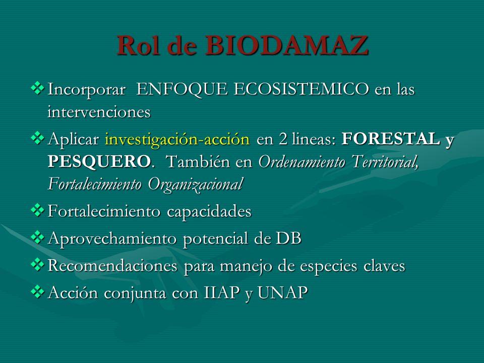 Rol de BIODAMAZ Incorporar ENFOQUE ECOSISTEMICO en las intervenciones