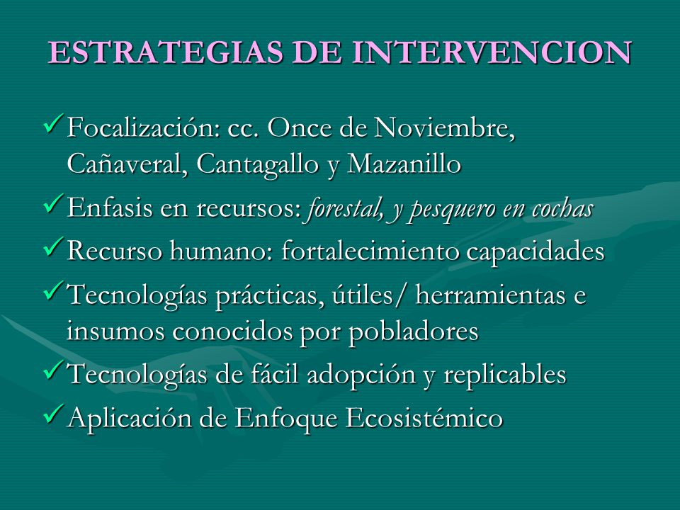ESTRATEGIAS DE INTERVENCION