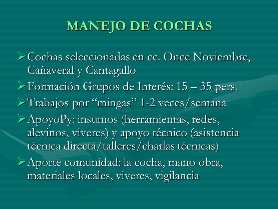 MANEJO DE COCHAS Cochas seleccionadas en cc. Once Noviembre, Cañaveral y Cantagallo. Formación Grupos de Interés: 15 – 35 pers.