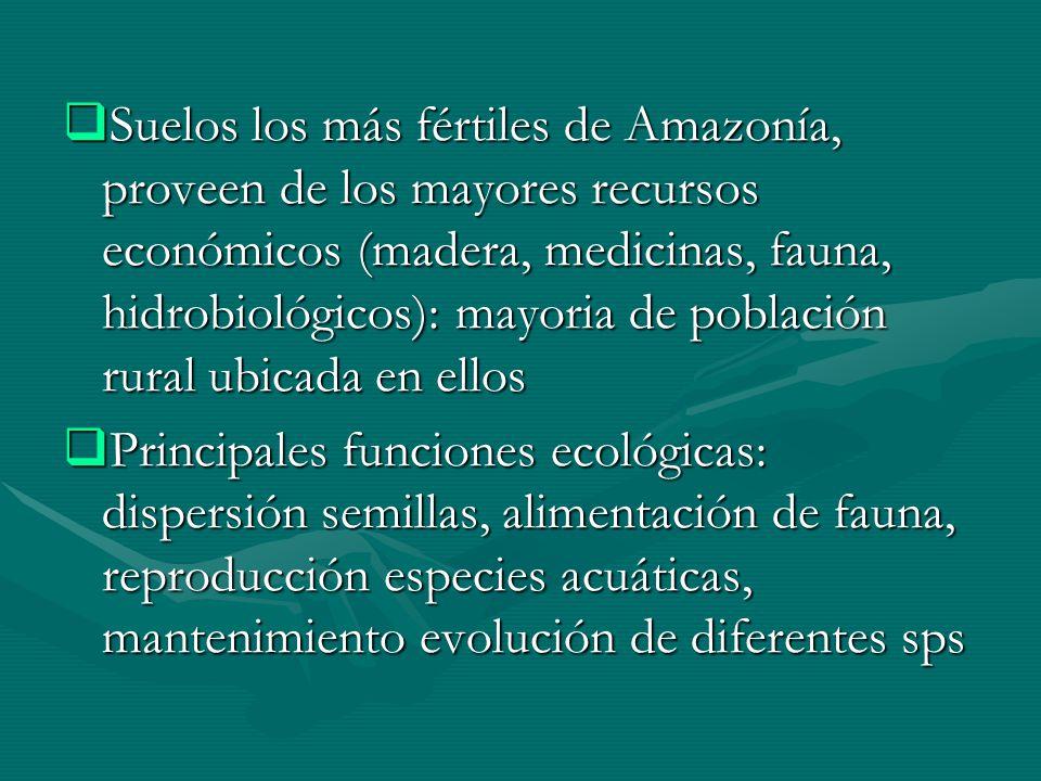 Suelos los más fértiles de Amazonía, proveen de los mayores recursos económicos (madera, medicinas, fauna, hidrobiológicos): mayoria de población rural ubicada en ellos