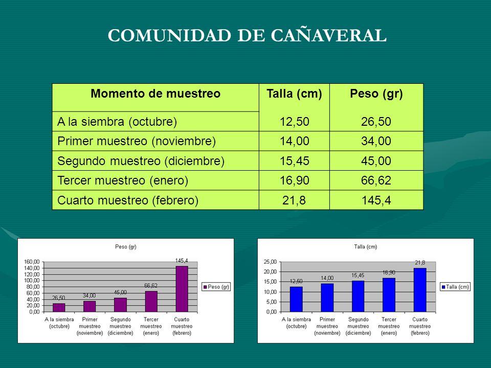 COMUNIDAD DE CAÑAVERAL