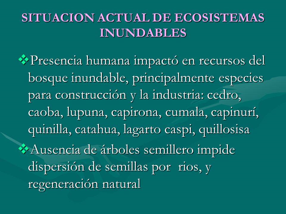 SITUACION ACTUAL DE ECOSISTEMAS INUNDABLES