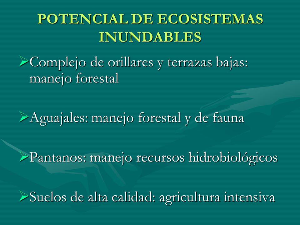 POTENCIAL DE ECOSISTEMAS INUNDABLES