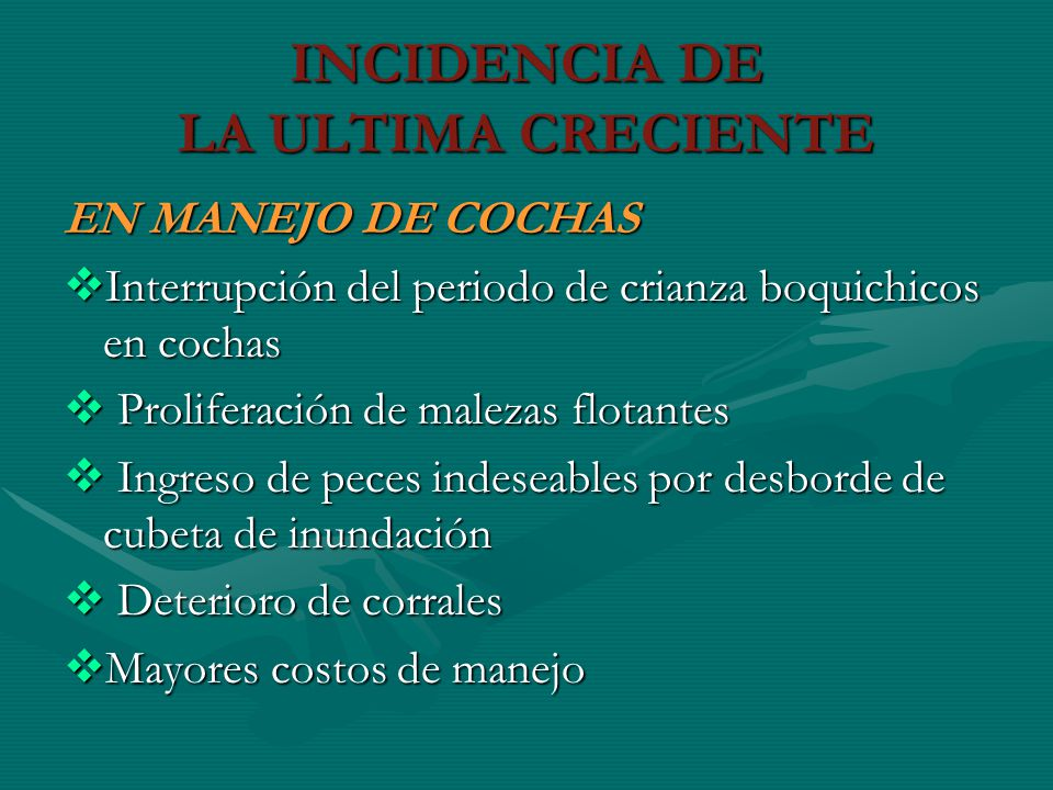INCIDENCIA DE LA ULTIMA CRECIENTE