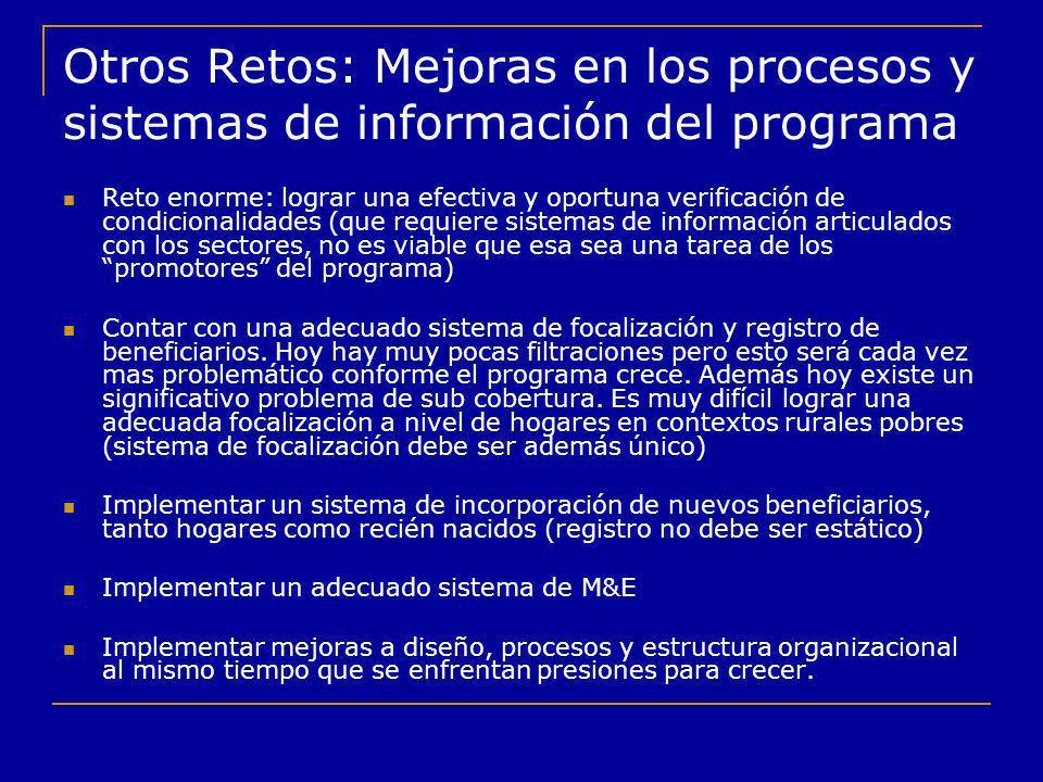Otros Retos: Mejoras en los procesos y sistemas de información del programa