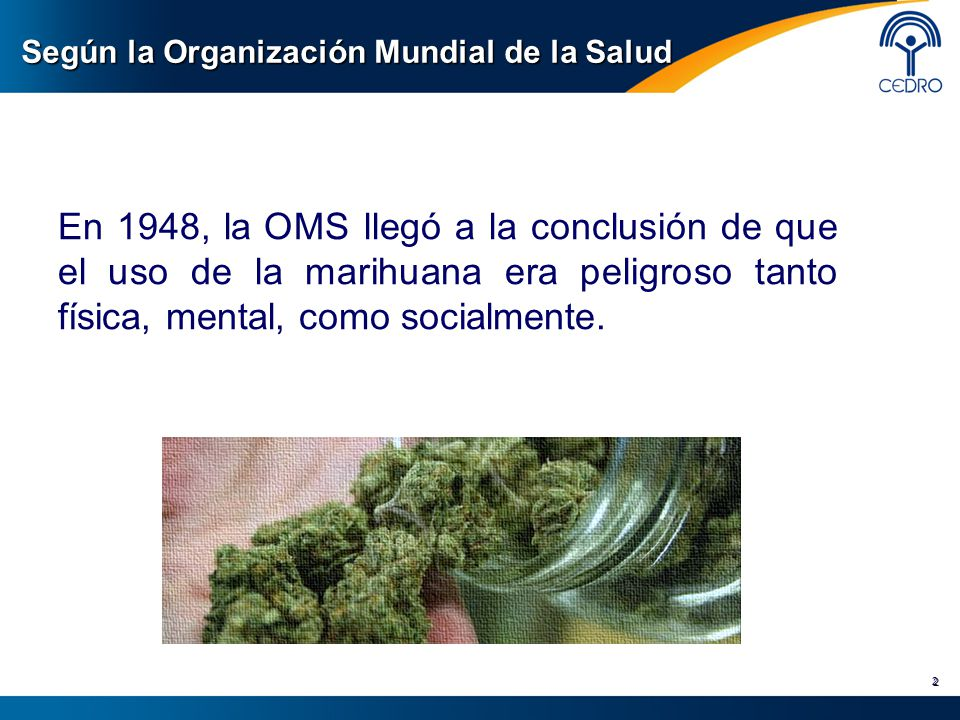 Según la Organización Mundial de la Salud