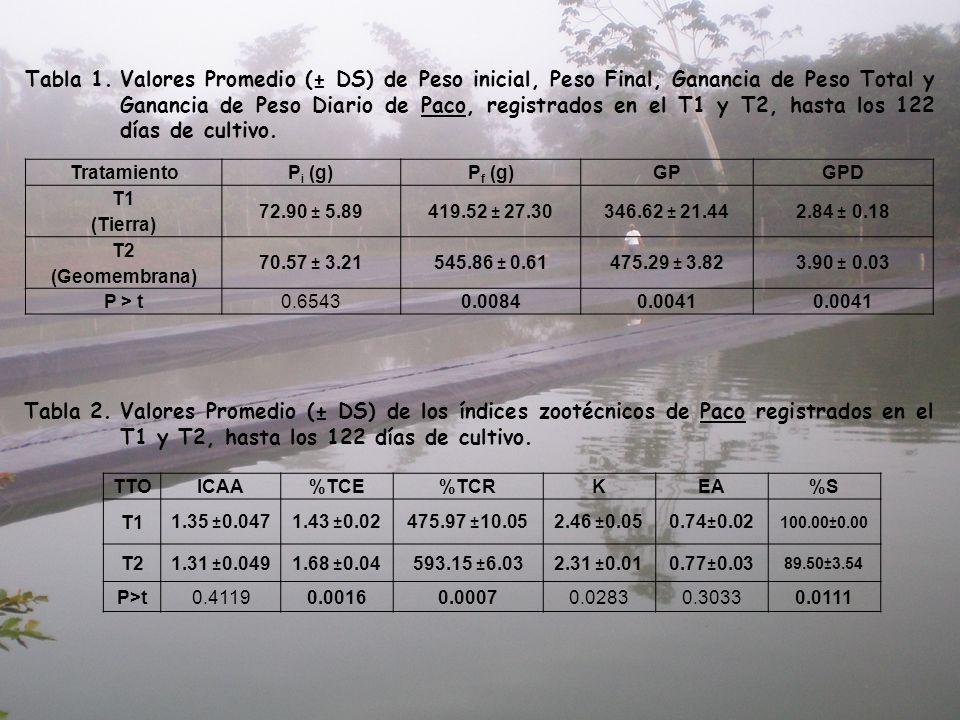 Tabla 1. Valores Promedio (± DS) de Peso inicial, Peso Final, Ganancia de Peso Total y Ganancia de Peso Diario de Paco, registrados en el T1 y T2, hasta los 122 días de cultivo.