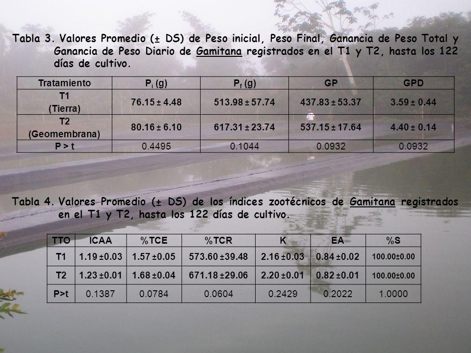Tabla 3. Valores Promedio (± DS) de Peso inicial, Peso Final, Ganancia de Peso Total y Ganancia de Peso Diario de Gamitana registrados en el T1 y T2, hasta los 122 días de cultivo.