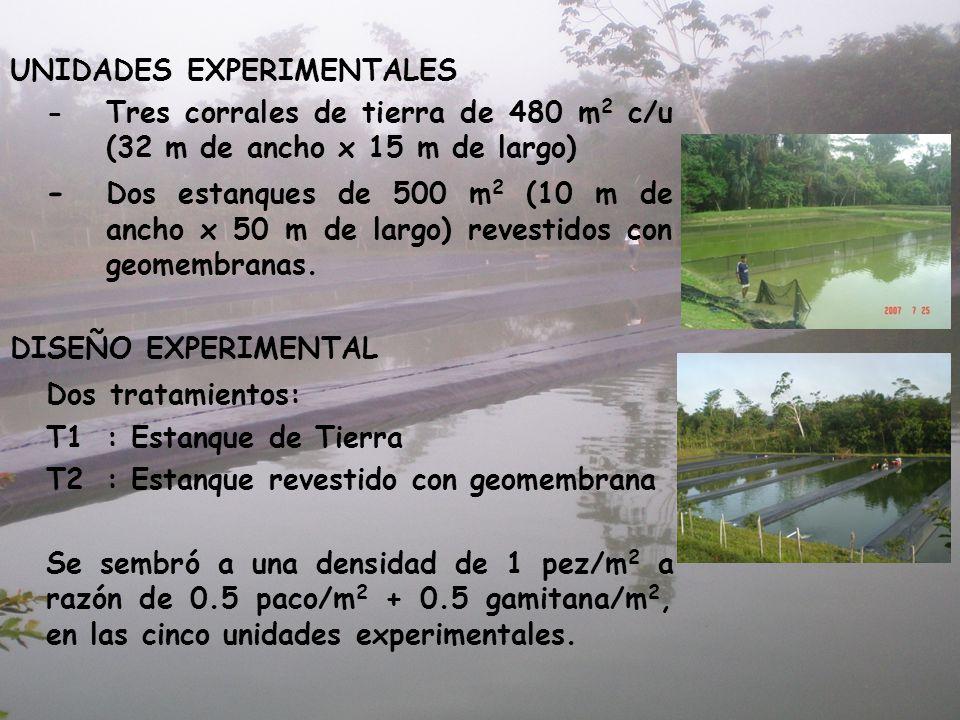 UNIDADES EXPERIMENTALES