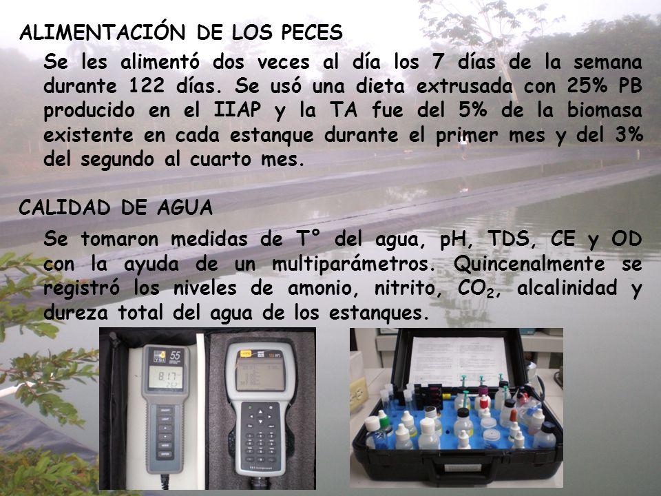 ALIMENTACIÓN DE LOS PECES