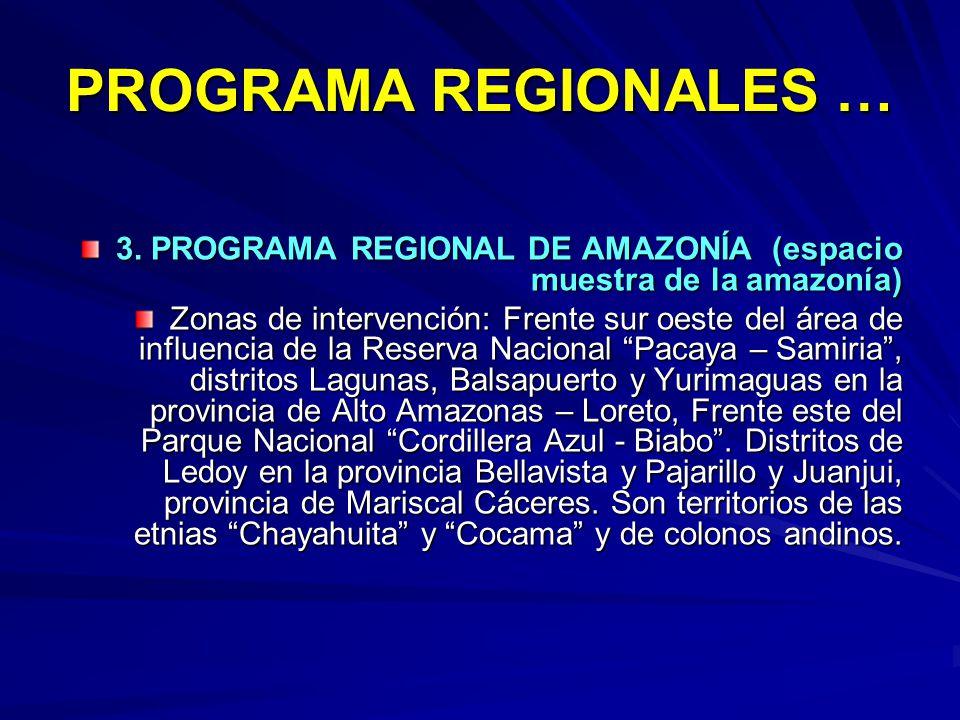 PROGRAMA REGIONALES … 3. PROGRAMA REGIONAL DE AMAZONÍA (espacio muestra de la amazonía)