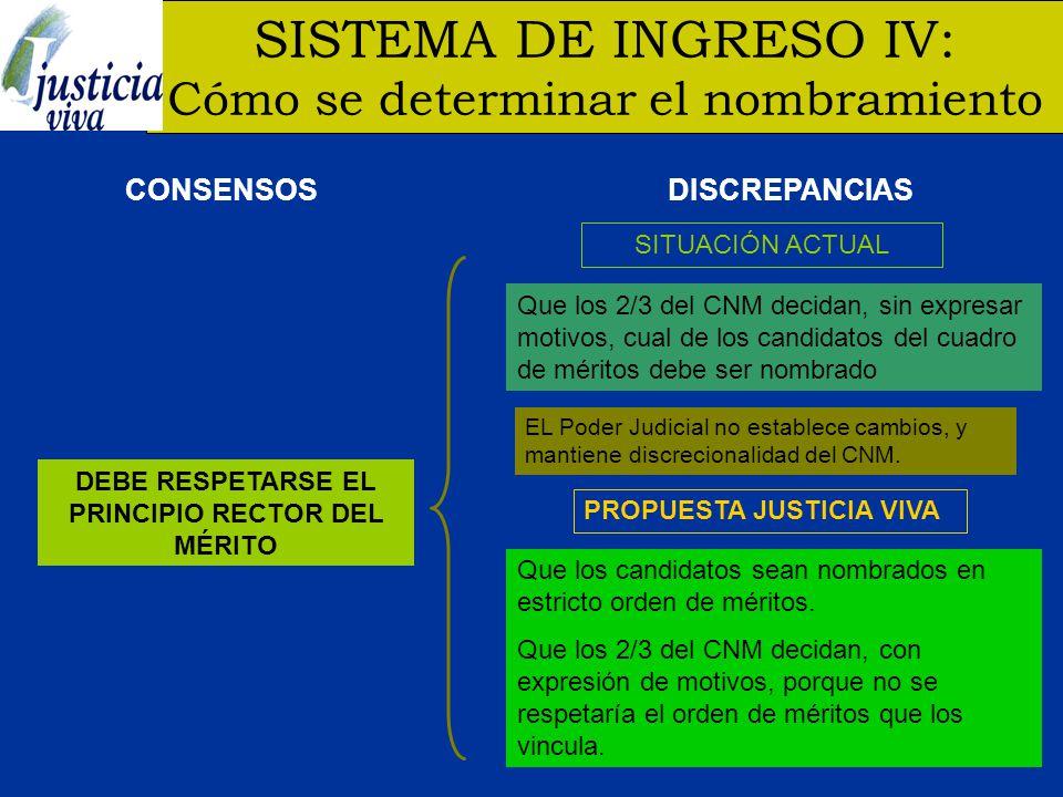 DEBE RESPETARSE EL PRINCIPIO RECTOR DEL MÉRITO