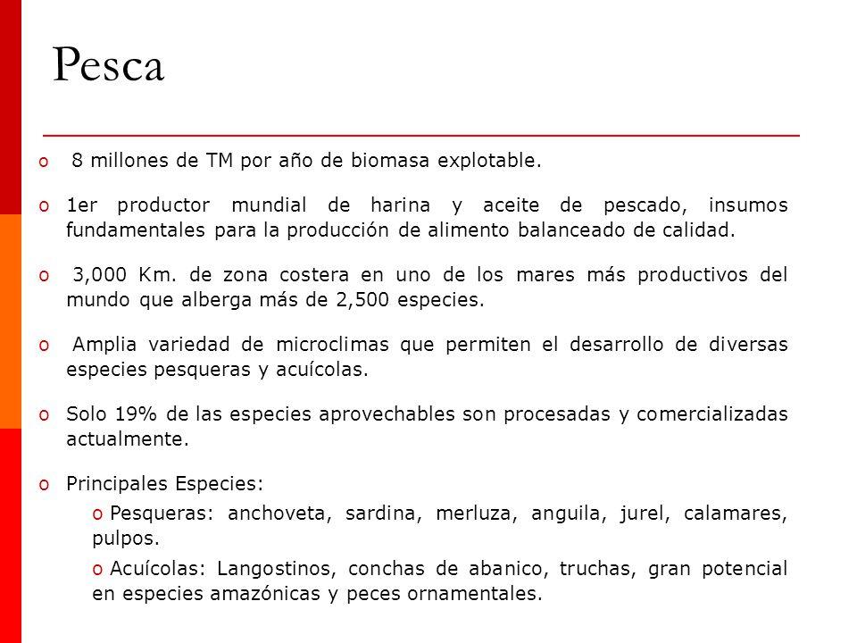 Pesca 8 millones de TM por año de biomasa explotable.