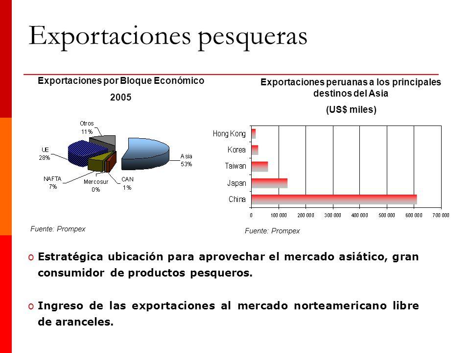 Exportaciones pesqueras